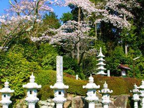 慈恩寺(じおんじ)は大阪府池田市のお寺です。