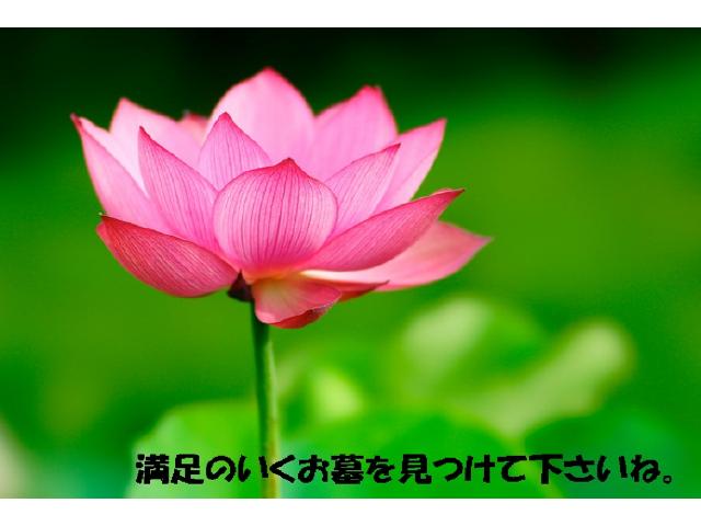 pic-64-01