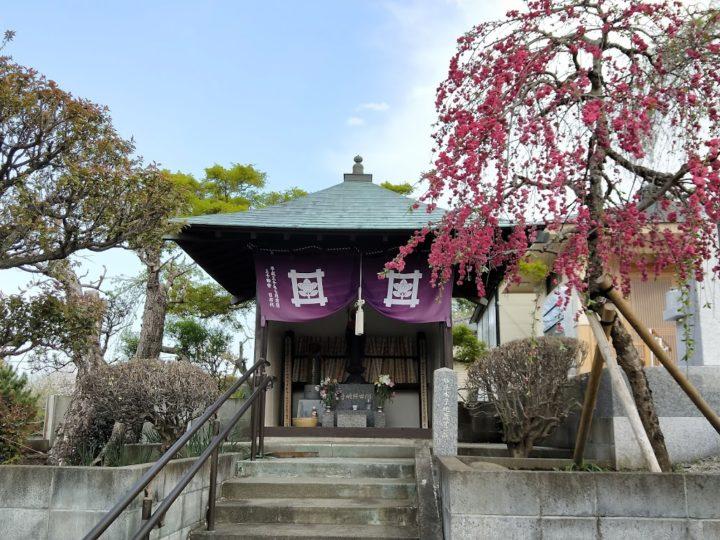 妙傳寺(みょうでんじ)