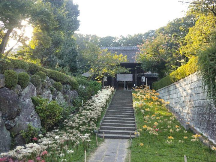 西方寺の写真