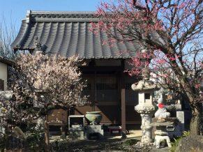 宝性寺(ほうしょうじ)は埼玉県熊谷市のお寺です。